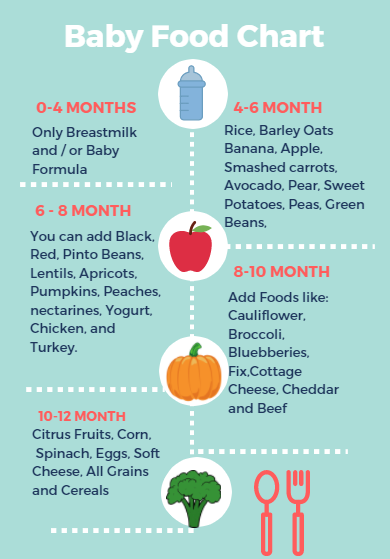Food Ideas For Your 4 To 6 Month Old Baby Mrs Young Diaries